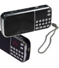 "mobiles Radio ""CT-5"" mit USB/SD-Slot"
