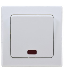 DELPHI Kontroll-Schalter mit Lämpchen Bild 1
