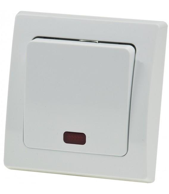 DELPHI Kontroll-Schalter mit Lämpchen Bild 2